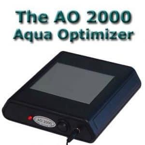 ao 2000